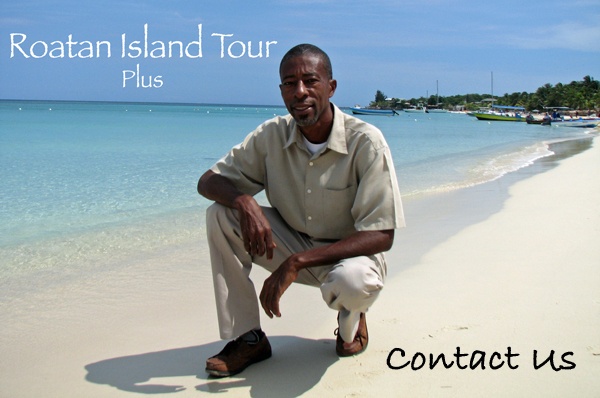 Roatan island tour plus
